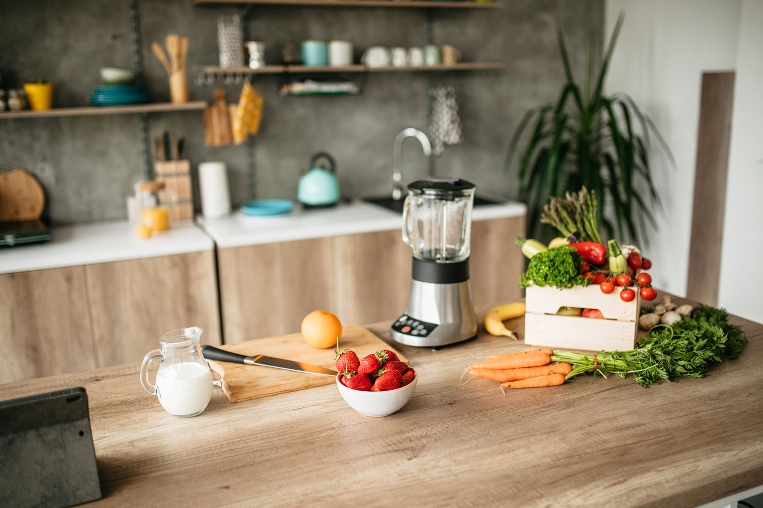 Can A Blender Be Used As A Grinder?