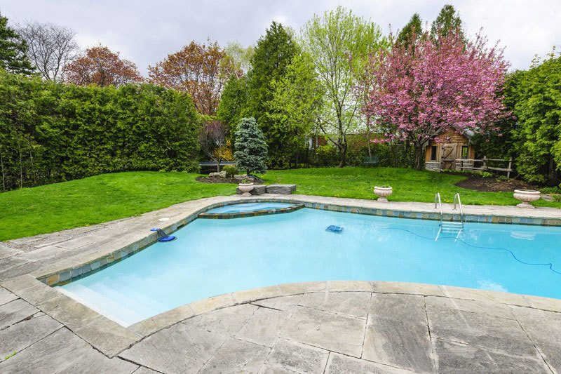 Poolside Crops to Use in A Backyard
